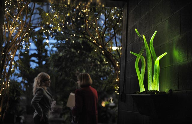 Furnace Design Studio artists craft gardens of glass for Botanicals exhibit